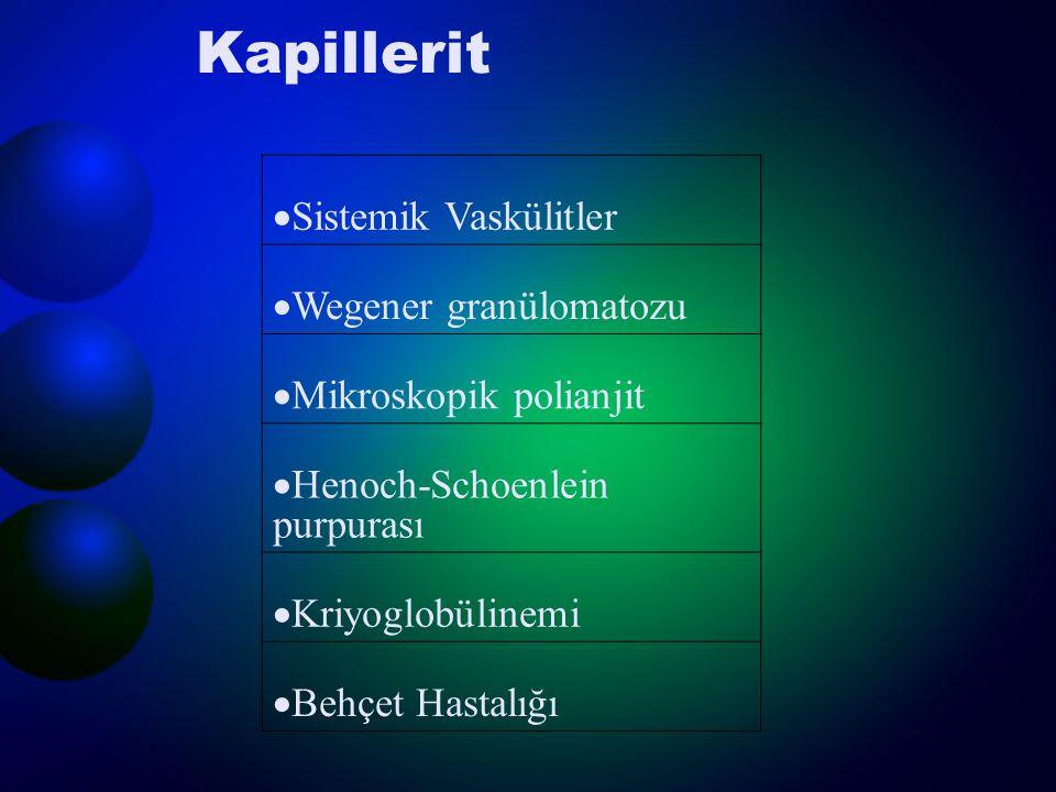 Kapillerit  Sistemik Vaskülitler  Wegener granülomatozu  Mikroskopik polianjit  Henoch-Schoenlein purpurası  Kriyoglobülinemi  Behçet Hastalığı