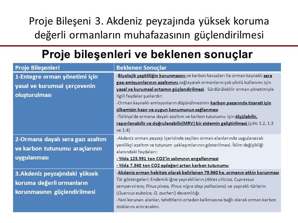 Proje Bileşeni 3.