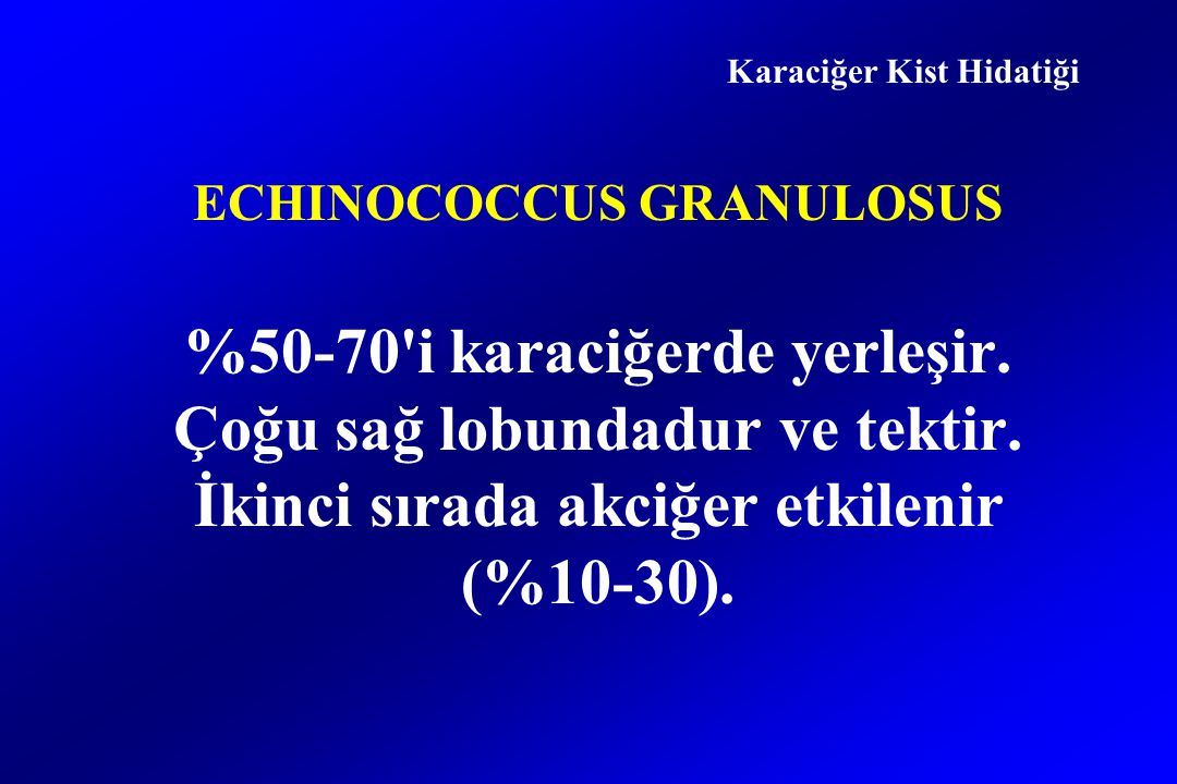 ECHINOCOCCUS GRANULOSUS %50-70 i karaciğerde yerleşir.