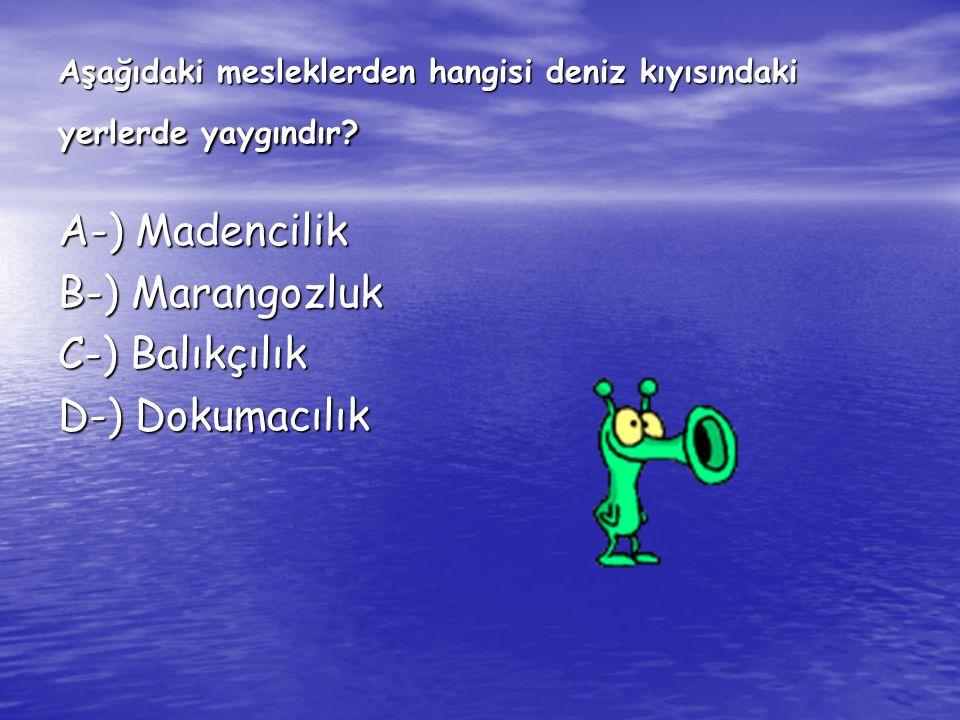 Aşağıdaki mesleklerden hangisi deniz kıyısındaki yerlerde yaygındır? A-) Madencilik B-) Marangozluk C-) Balıkçılık D-) Dokumacılık