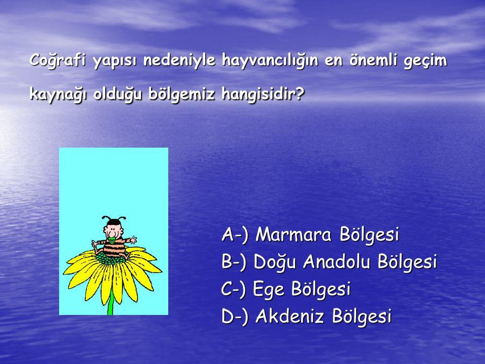 Coğrafi yapısı nedeniyle hayvancılığın en önemli geçim kaynağı olduğu bölgemiz hangisidir? A-) Marmara Bölgesi B-) Doğu Anadolu Bölgesi C-) Ege Bölges