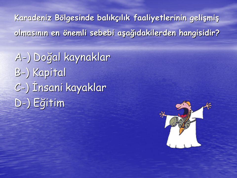 Karadeniz Bölgesinde balıkçılık faaliyetlerinin gelişmiş olmasının en önemli sebebi aşağıdakilerden hangisidir? A-) Doğal kaynaklar B-) Kapital C-) İn