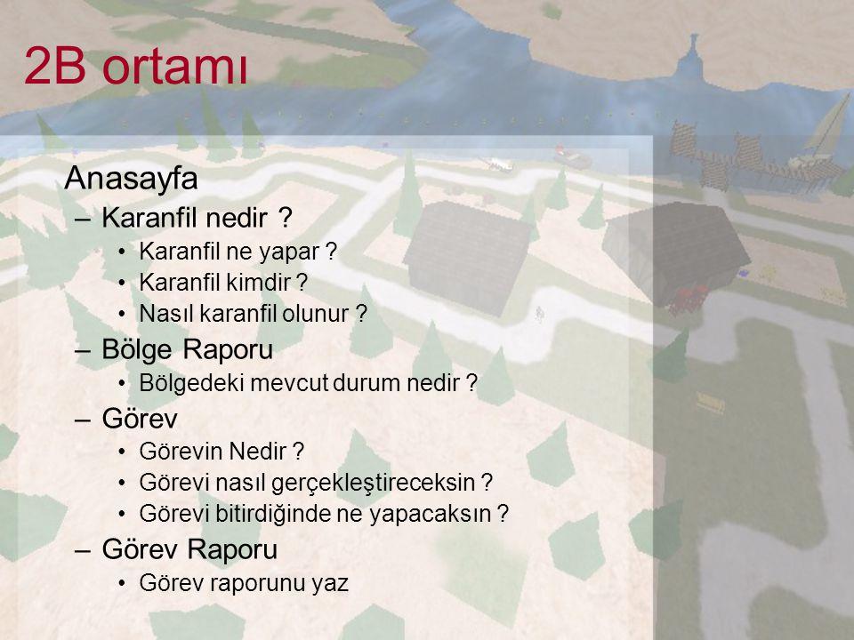 2B ortamı Anasayfa –Karanfil nedir ? Karanfil ne yapar ? Karanfil kimdir ? Nasıl karanfil olunur ? –Bölge Raporu Bölgedeki mevcut durum nedir ? –Görev
