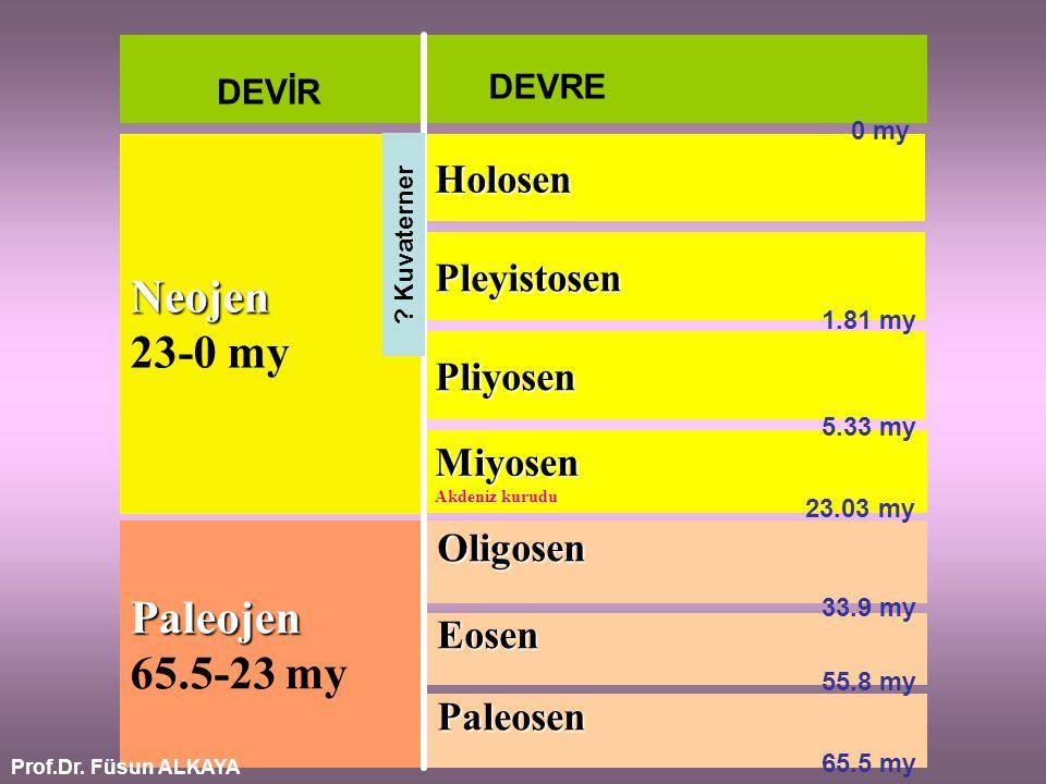 Paleosen Eosen Oligosen Paleojen Paleojen 65.5-23 my Miyosen Akdeniz kurudu Pliyosen Neojen 23-0 my DEVİR DEVRE Pleyistosen Holosen 5.33 my 23.03 my 3