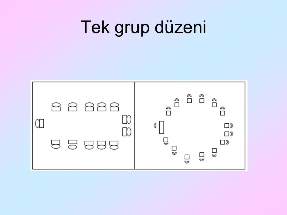 Tek grup düzeni