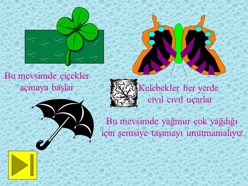 Bu mevsimde çiçekler açmaya başlar Kelebekler her yerde cıvıl cıvıl uçarlar Bu mevsimde yağmur çok yağdığı için şemsiye taşımayı unutmamalıyız