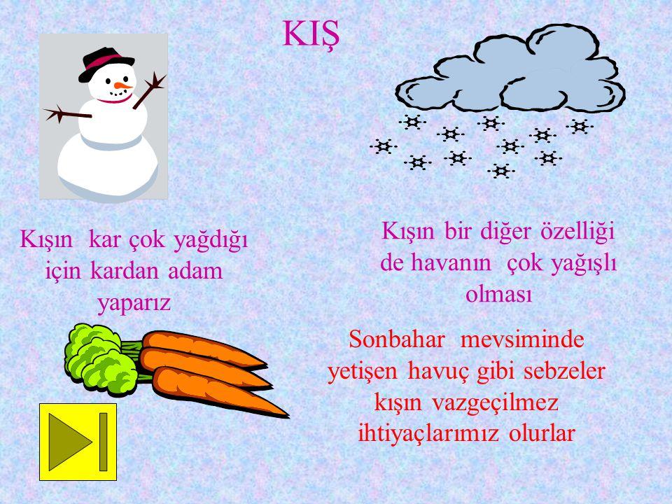 KIŞ Kışın kar çok yağdığı için kardan adam yaparız Kışın bir diğer özelliği de havanın çok yağışlı olması Sonbahar mevsiminde yetişen havuç gibi sebzeler kışın vazgeçilmez ihtiyaçlarımız olurlar