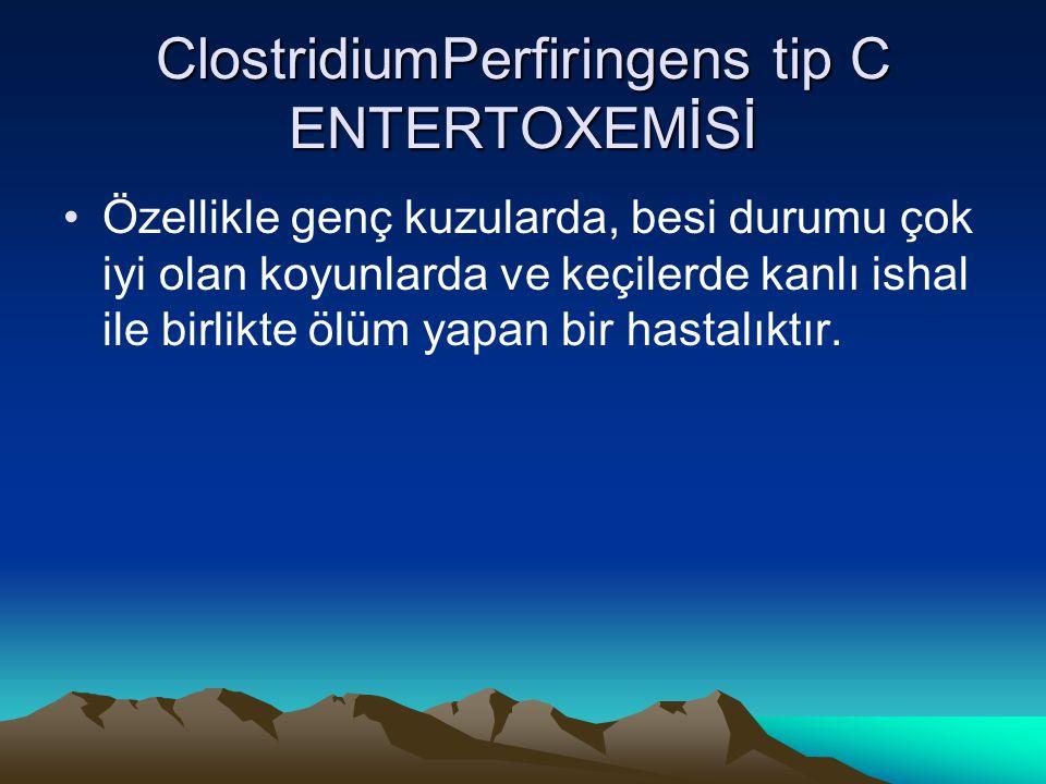 ClostridiumPerfiringens tip C ENTERTOXEMİSİ Özellikle genç kuzularda, besi durumu çok iyi olan koyunlarda ve keçilerde kanlı ishal ile birlikte ölüm y