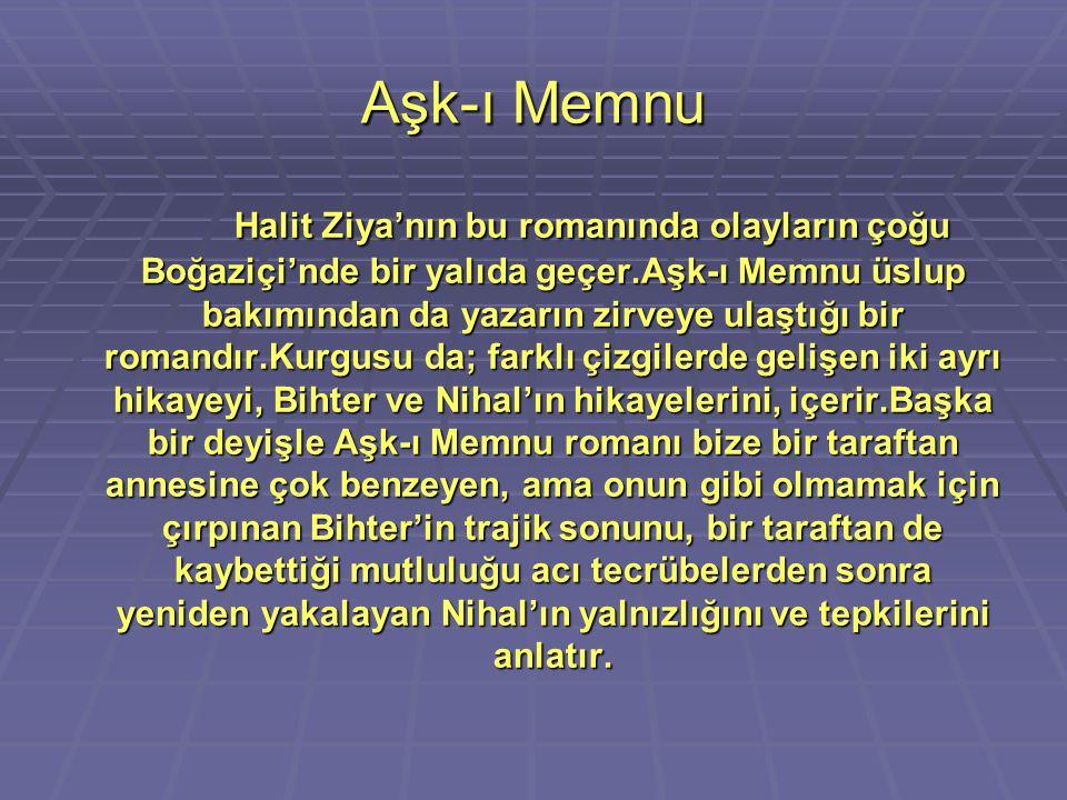 Aşk-ı Memnu Halit Ziya'nın bu romanında olayların çoğu Boğaziçi'nde bir yalıda geçer.Aşk-ı Memnu üslup bakımından da yazarın zirveye ulaştığı bir roma