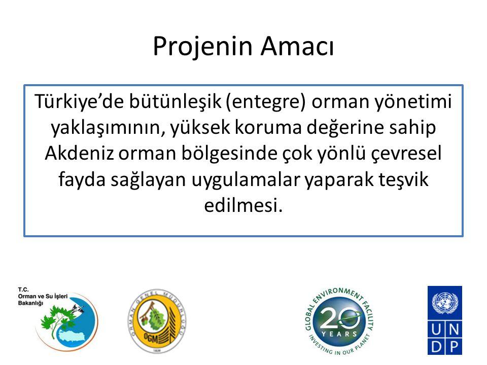 Projenin Yönetim Yapısı (Taslak)