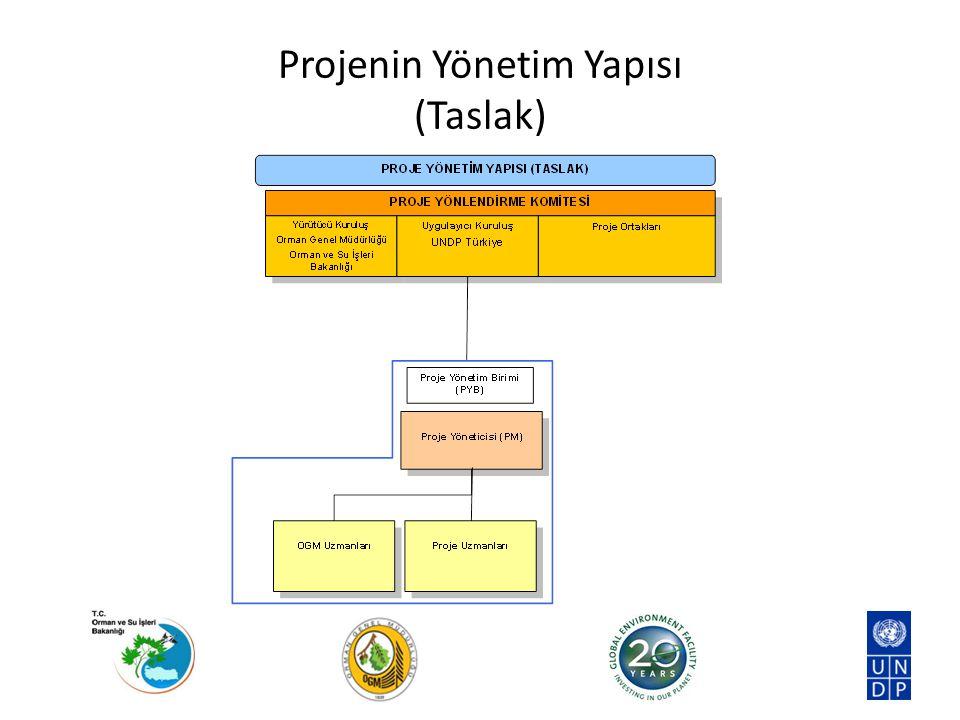 Yürütücü Kuruluş: Orman ve Su İşleri Bakanlığı, Orman Genel Müdürlüğü Ana Görev: Proje koordinasyonu, pilot alan yönetimi ve planlama / yaygınlaştırma Proje faaliyetleri doğrultusunda ihtiyaç duyulan teknik desteğin ilgili Daire Başkanlıkları aracılığıyla sağlanması Proje Yönlendirme Komitesi'ne başkanlık yapılması Projenin kabul edilen hedeflere ulaşabilmesi için proje faaliyetlerini oluşturulmasında fikir beyan etmek ve proje faaliyetlerinin koordine edilmesi, Proje uygulamasını kolaylaştırmak amacıyla teknik destek sağlayacak OGM uzmanlarının görevlendirilmesi İş planlarına ve kabul edilen bütçeye uygun olarak harcamaların onaylanması, Proje için gereken girdilerin sağlanması ve proje sonuçlarına ulaşılması için kolaylaştırıcılık, izleme ve raporlama faaliyetlerinin yerine getirilmesi, Proje uygulamaları ve etkileriyle ilgili UNDP'ye bilgi aktarılması Toplantı, çalıştay, seminer ve üst düzey faaliyetler için resmi yazışmaların yürütülmesi Projenin Yönetim Yapısı Yürütücü Kuruluş: Orman Genel Müdürlüğü