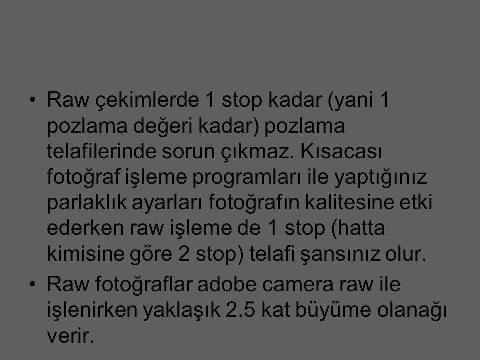 Raw çekimlerde 1 stop kadar (yani 1 pozlama değeri kadar) pozlama telafilerinde sorun çıkmaz. Kısacası fotoğraf işleme programları ile yaptığınız parl