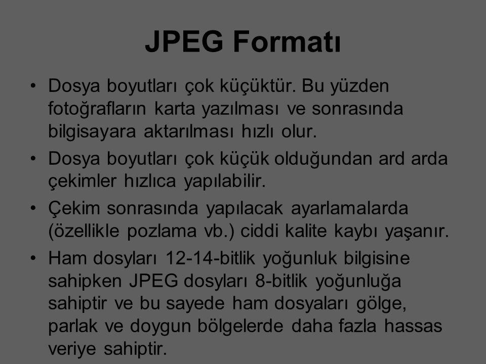 JPEG Formatı Dosya boyutları çok küçüktür. Bu yüzden fotoğrafların karta yazılması ve sonrasında bilgisayara aktarılması hızlı olur. Dosya boyutları ç
