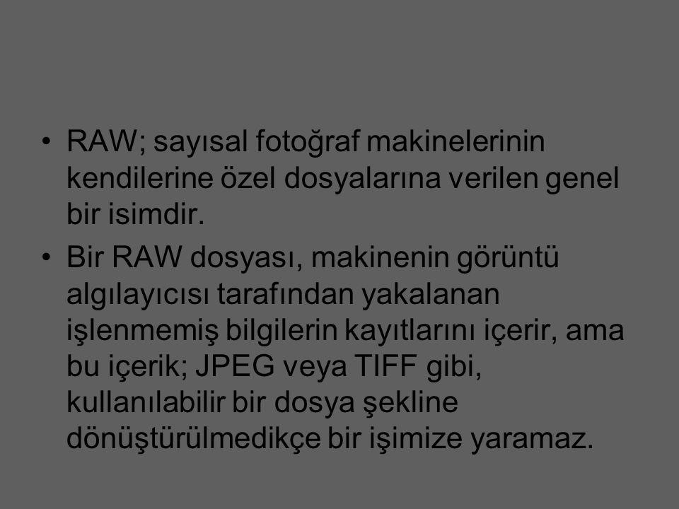 RAW; sayısal fotoğraf makinelerinin kendilerine özel dosyalarına verilen genel bir isimdir. Bir RAW dosyası, makinenin görüntü algılayıcısı tarafından