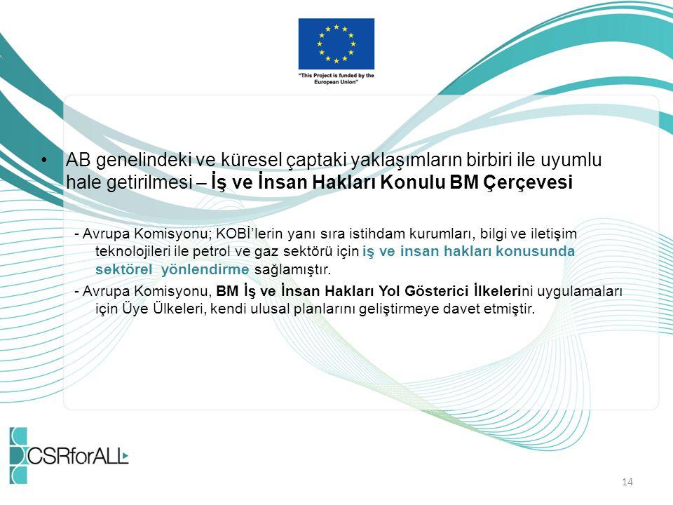 AB genelindeki ve küresel çaptaki yaklaşımların birbiri ile uyumlu hale getirilmesi – İş ve İnsan Hakları Konulu BM Çerçevesi - Avrupa Komisyonu; KOBİ