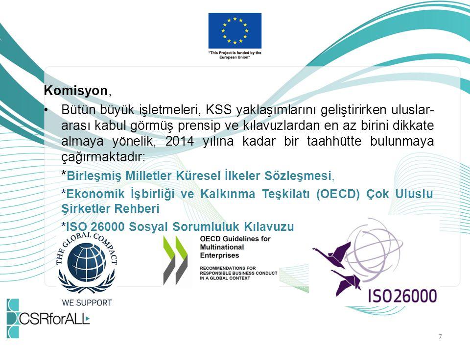 Komisyon, Bütün büyük işletmeleri, KSS yaklaşımlarını geliştirirken uluslar- arası kabul görmüş prensip ve kılavuzlardan en az birini dikkate almaya y