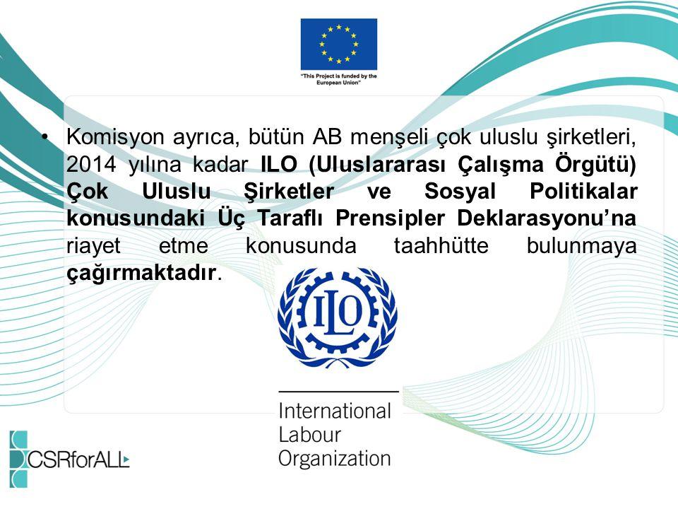 Komisyon ayrıca, bütün AB menşeli çok uluslu şirketleri, 2014 yılına kadar ILO (Uluslararası Çalışma Örgütü) Çok Uluslu Şirketler ve Sosyal Politikala