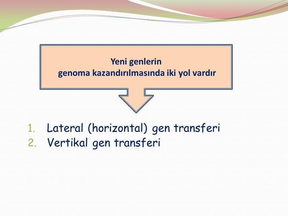 1. Lateral (horizontal) gen transferi 2. Vertikal gen transferi Yeni genlerin genoma kazandırılmasında iki yol vardır