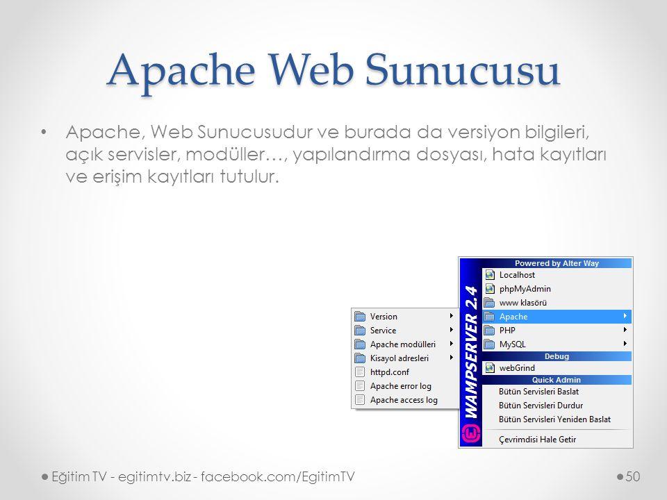 Apache Web Sunucusu Apache, Web Sunucusudur ve burada da versiyon bilgileri, açık servisler, modüller…, yapılandırma dosyası, hata kayıtları ve erişim kayıtları tutulur.