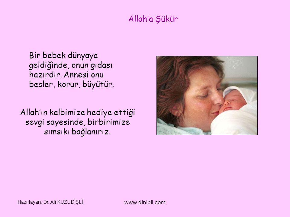 Hazırlayan: Dr. Ali KUZUDİŞLİ www.dinibil.com Allah'a Şükür Bir bebek dünyaya geldiğinde, onun gıdası hazırdır. Annesi onu besler, korur, büyütür. All