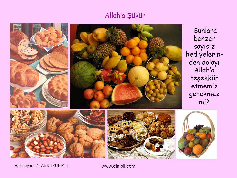 Hazırlayan: Dr. Ali KUZUDİŞLİ www.dinibil.com Bunlara benzer sayısız hediyelerin- den dolayı Allah'a teşekkür etmemiz gerekmez mi? Allah'a Şükür