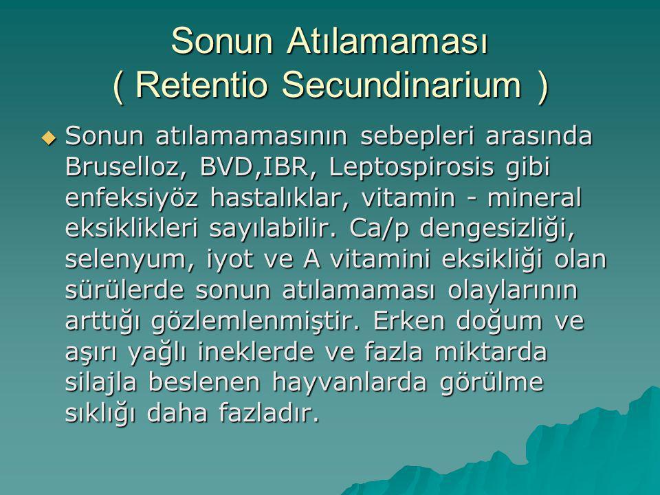 Sonun Atılamaması ( Retentio Secundinarium )  Sonun atılamamasının sebepleri arasında Bruselloz, BVD,IBR, Leptospirosis gibi enfeksiyöz hastalıklar,