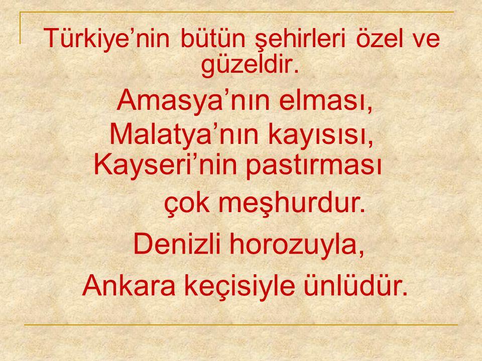 Manisa mesir macunuyla, İzmit pişmaniyesiyle, Afyon kaymağıyla, Erzurum balıyla, Kars peyniriyle, Trabzon hamsisiyle anılır.