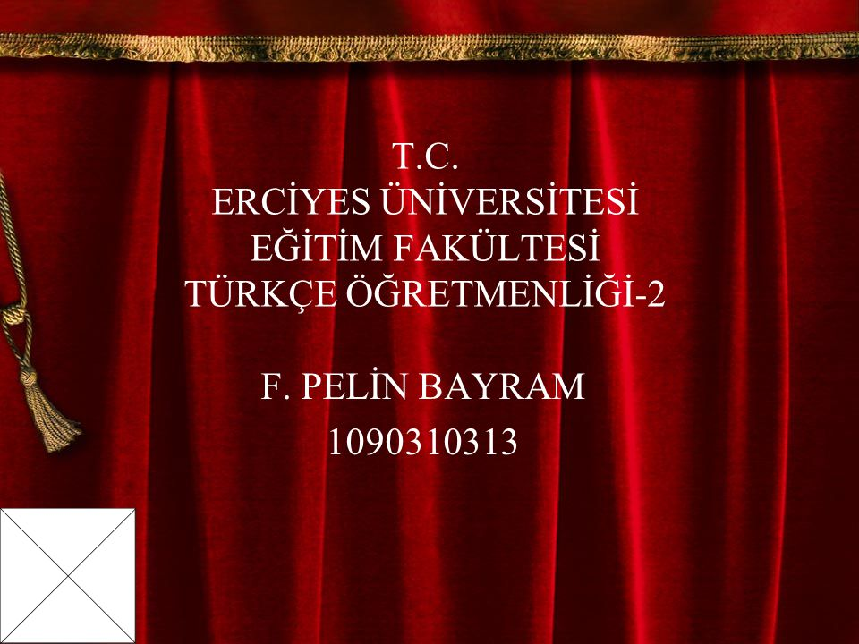 T.C. ERCİYES ÜNİVERSİTESİ EĞİTİM FAKÜLTESİ TÜRKÇE ÖĞRETMENLİĞİ-2 F. PELİN BAYRAM 1090310313