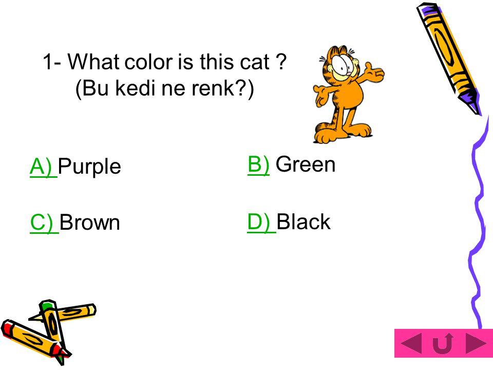 1- What color is this cat ? (Bu kedi ne renk?) A) A) Purple B)B) Green D) D) Black C) C) Brown