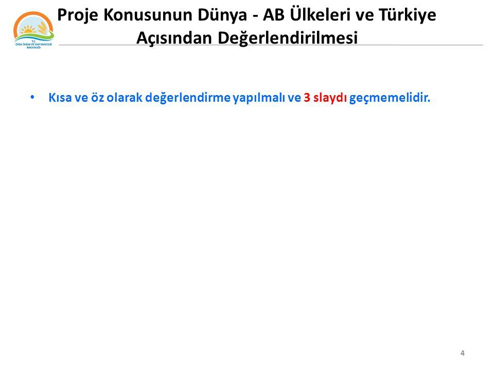 Proje Konusunun Dünya - AB Ülkeleri ve Türkiye Açısından Değerlendirilmesi Kısa ve öz olarak değerlendirme yapılmalı ve 3 slaydı geçmemelidir.