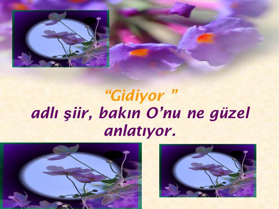 Ne mutlu bize ki, biz de Türk'üz. Ve O' nunla vatanda ş ız. Ne Mutlu Türk'üm Diyene