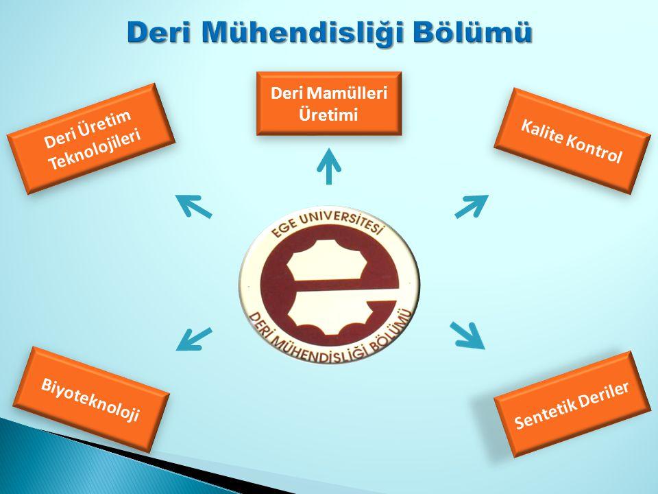 Deri Üretim Teknolojileri Biyoteknoloji Sentetik Deriler Deri Mamülleri Üretimi Kalite Kontrol