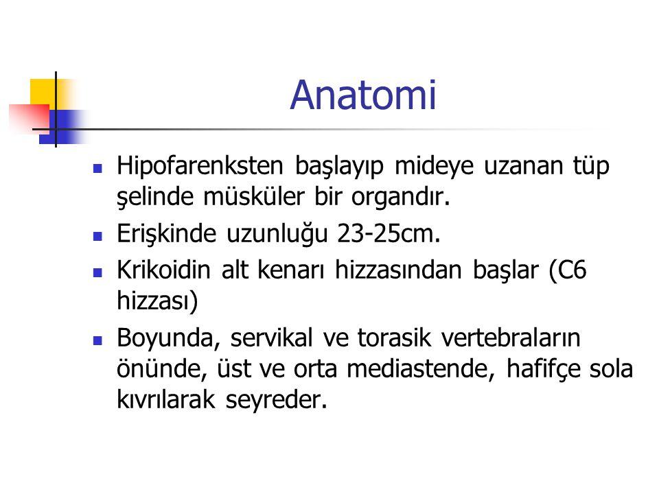 Anatomi T10 hizzasında hiatustan geçer(vagus ve özofagus damarlarıyla beraber T11 hizasında, cardiada sonlanır.