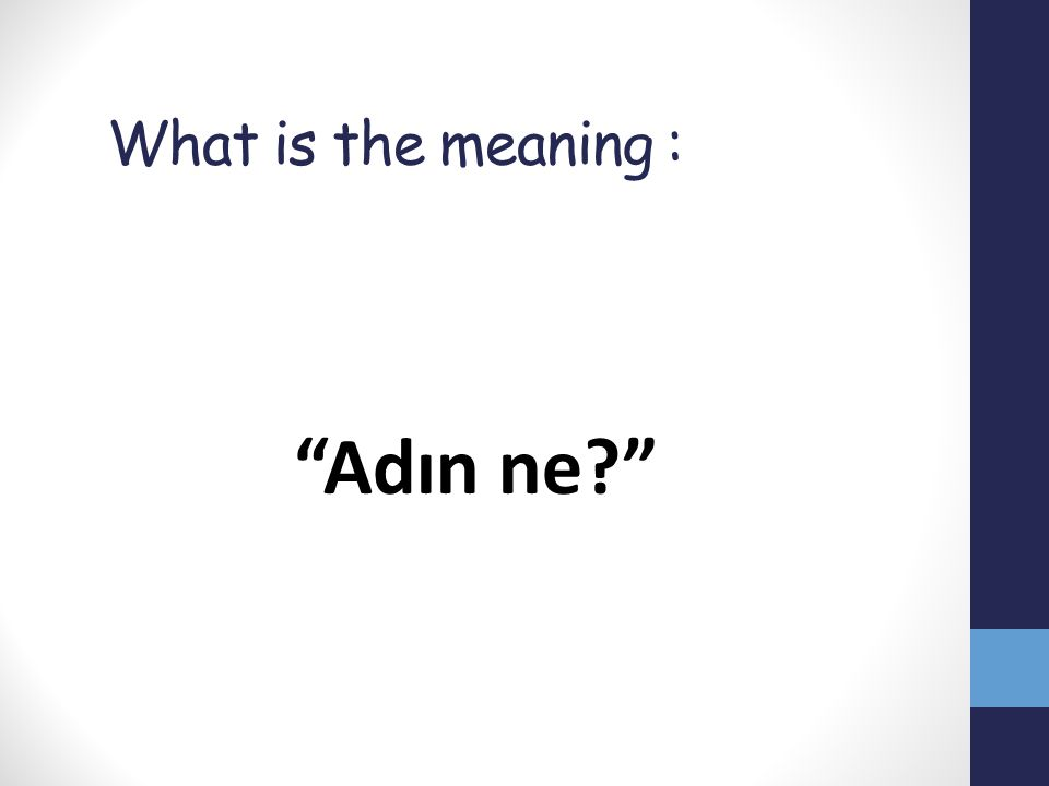 What is the meaning : Adın ne