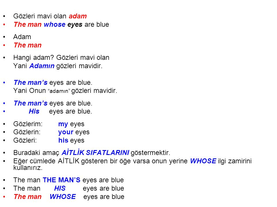 Gözleri mavi olan adam The man whose eyes are blue Adam The man Hangi adam.