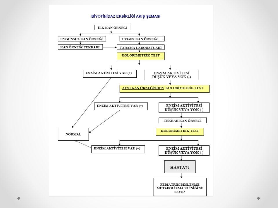 Devlet kontrolü ve devlet denetimi. Devlet kontrol ve denetleme organları