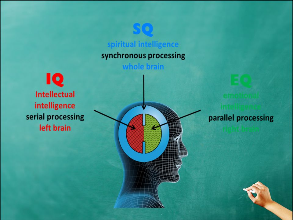 emotional intelligence testing Emotional intelligence test : one of the major missing parts in the success equation is emotional intelligence, a concept made popular by the groundbreaking book by daniel goleman, which is based on years of research by numerous scientists such as peter salovey, john meyer, howard gardner, robert sternberg and jack block, just to name a few.