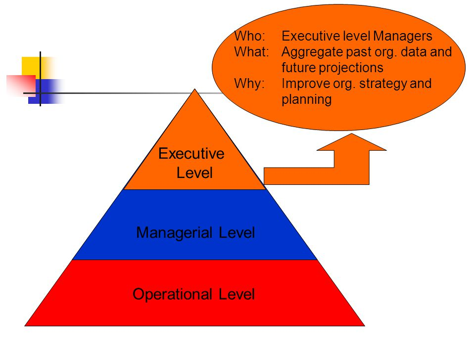 Who: Executive level Managers What: Aggregate past org.